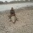 Photo de profile de Samuel Elmaleh
