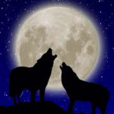 Howl at the Moon (@hrlks)   Twitter  Howl at the Moo...