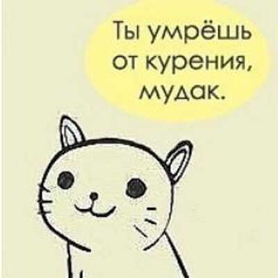 орех картинка ты умрешь кот живет турции, даже