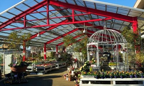 【楽天市場】所沢 植木鉢 センターの通販
