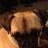 Rosemary Slagan (@robo1994) Twitter profile photo