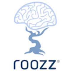 roozzcom roozzplugin on twitter review roozz rents software inside the cloud 240x240