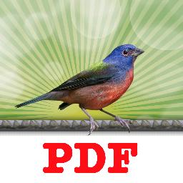 print to pdf where saved
