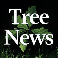 Tree News | Social Profile