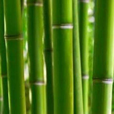 Bamboo Garden Yoga BambooGardnYoga Twitter