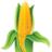 SDNTV's avatar