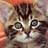 cat1105