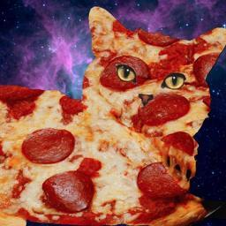 Pizza Cat Express Lucopolo Twitter