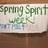 FMHS Spirit Week