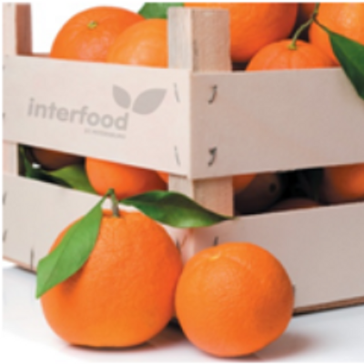 Interfood + Prodtech (@food_expo) | Twitter