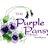 The Purple Pansy