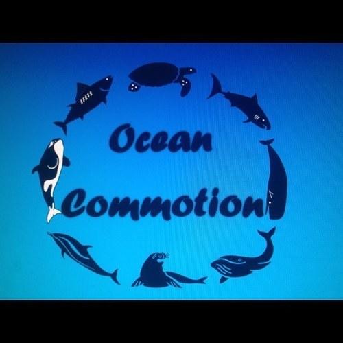 Commotion Deutsch