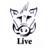 Boar Live