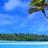 Caribbean İsland