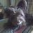 @MariaMireia94 Profile picture
