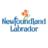 FES-NL's Twitter avatar