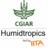 Humidtropics
