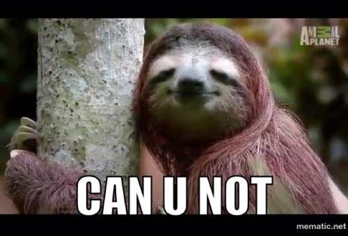 Dirty sloth jokes - photo#13