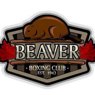 Beaver boxing club beaver boxing twitter for Boxing club salonais