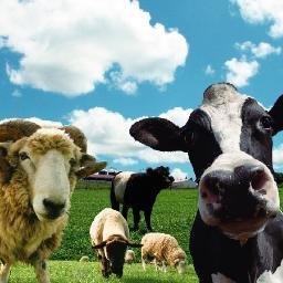 畜産・牧場関連情報 on Twitter:...
