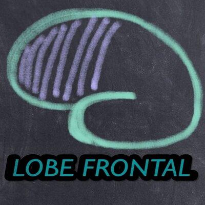 Lobefrontal