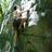 All Climbing