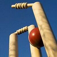 Love Thy Cricket