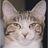 頼野亜唯子▶︎サッカーと将棋と猫