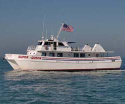 Queen fleet queenfleet twitter for Queen fleet deep sea fishing clearwater fl