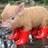 pig_squealer