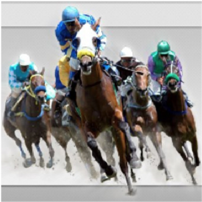 Image Result For Streaming Live Horse Racing