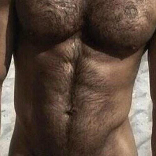 Hairygay Gay Hairy