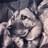 Le_nichols's avatar