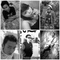P_Phytoo_band
