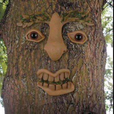 Cum tree