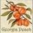 Georgia Peach twitter profile