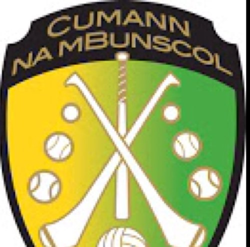 Image result for cumann na mbunscol