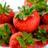 manorfarmfruits