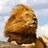 Bilkis (@JBilkis) Twitter profile photo