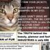 Occupy UN 4 Animals