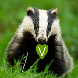 Vegan Badger