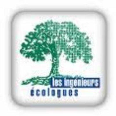 Logo de AFIE