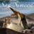 Visit_SanSimeon