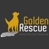 Golden Rescue Social Profile