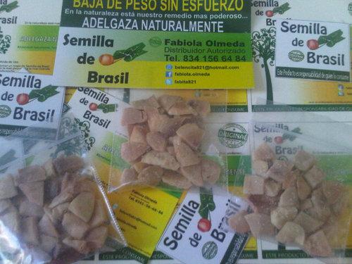 Semilla de brasil fabita821 twitter Semilla de brasil es toxica
