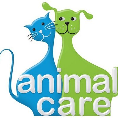 animal care kuwait animalcarekuwai twitter