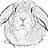 Triangle Rabbits