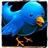 Tweet__s