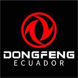 @dongfeng_ecu