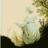 Jane Austen's Zest